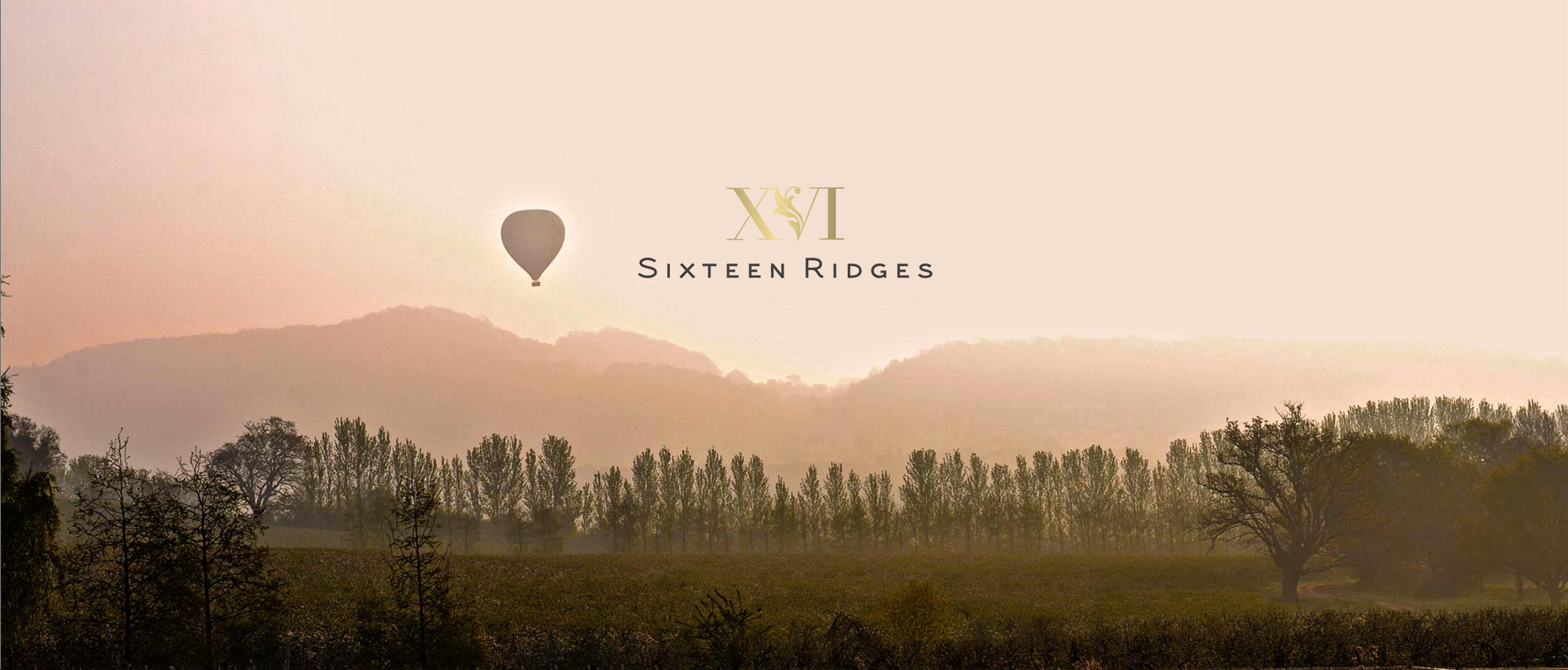 Sixteen Ridges wines